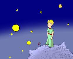 stelle-principe