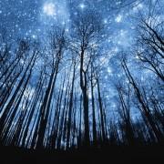 foto meditazione sotto le stelle